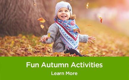Fun Autumn Activities Learn More