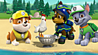 PAW Patrol: Risky Rescues