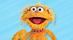 Sesame Street: Rocco