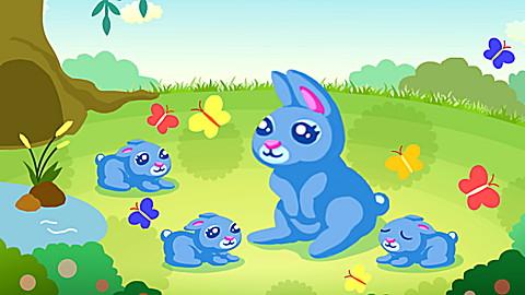Le chemin des petits lapins