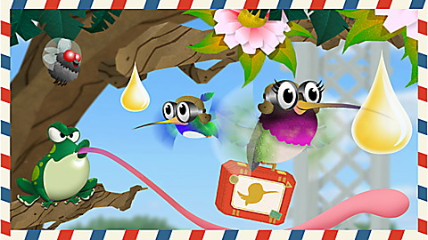 Hummingbird Holiday
