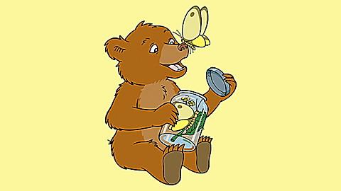Little Bear: Little Bear and Friends