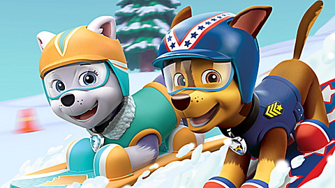 PAW Patrol: Pup-tastic Teamwork!