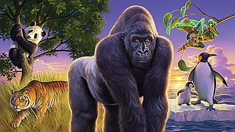 Scholastic: Super Animal Genius